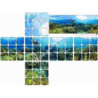Coral reef panorama sticker